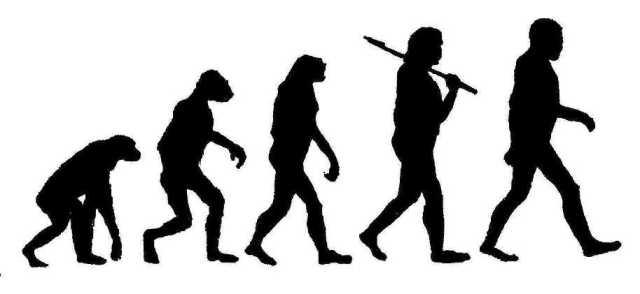 evolution-1hzzvk3